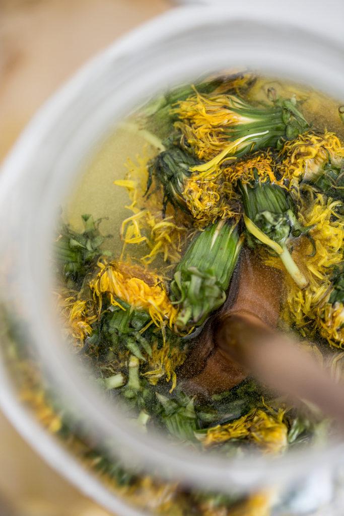 Löwenzahn Gelee  - Essbare Wildkräuter | Gesunde vegane Rezepte, Fermentation, Nachhaltigkeit - Syl Gervais