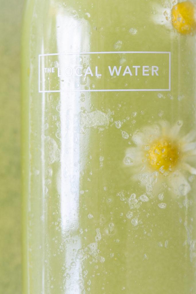 Gurken Limonade für heiße Tage | Gesunde vegane Rezepte, Fermentation, Nachhaltigkeit - Syl Gervais