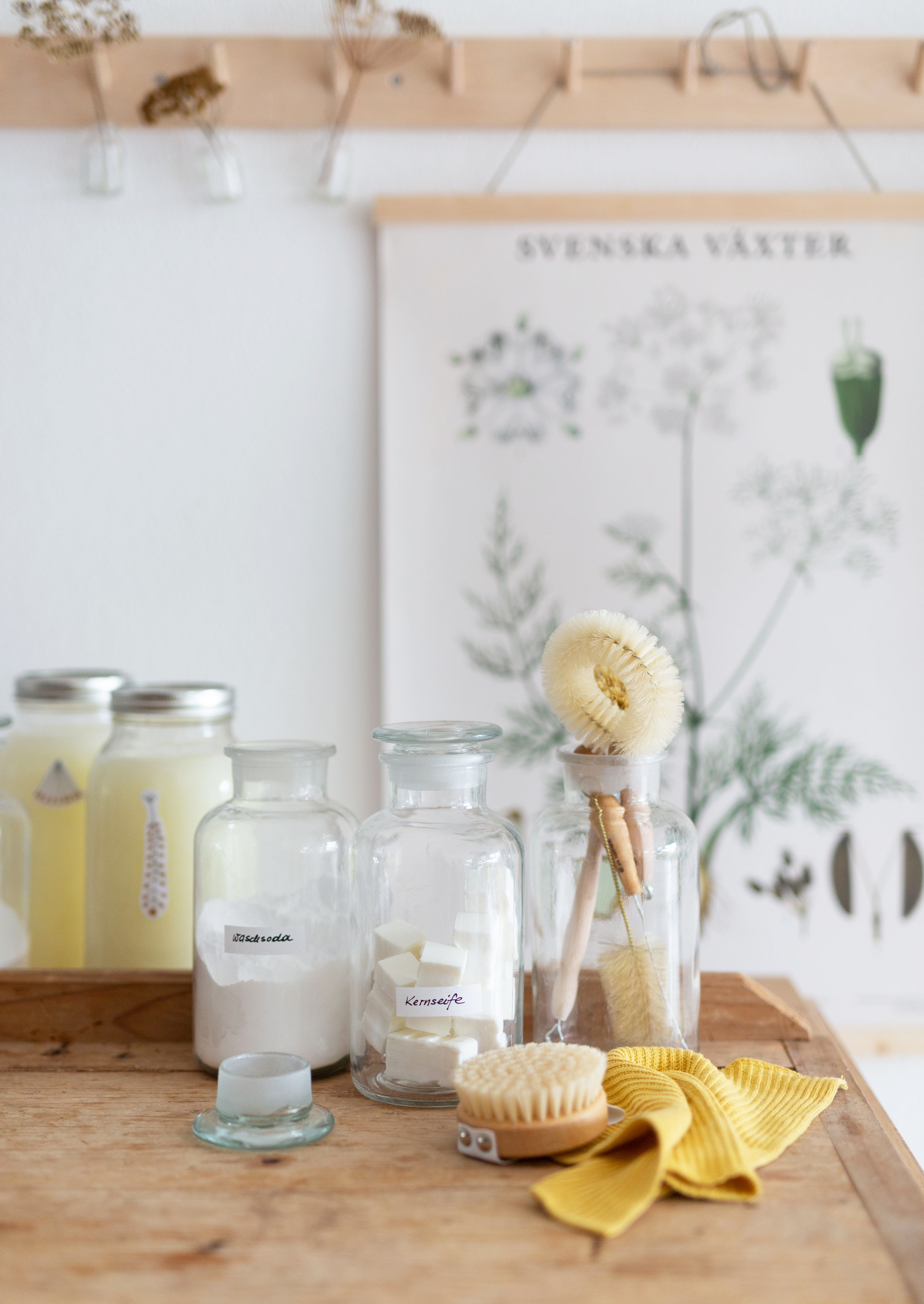 Waschmittel selber machen | Gesunde vegane Rezepte, Fermentation, Nachhaltigkeit - Syl Gervais