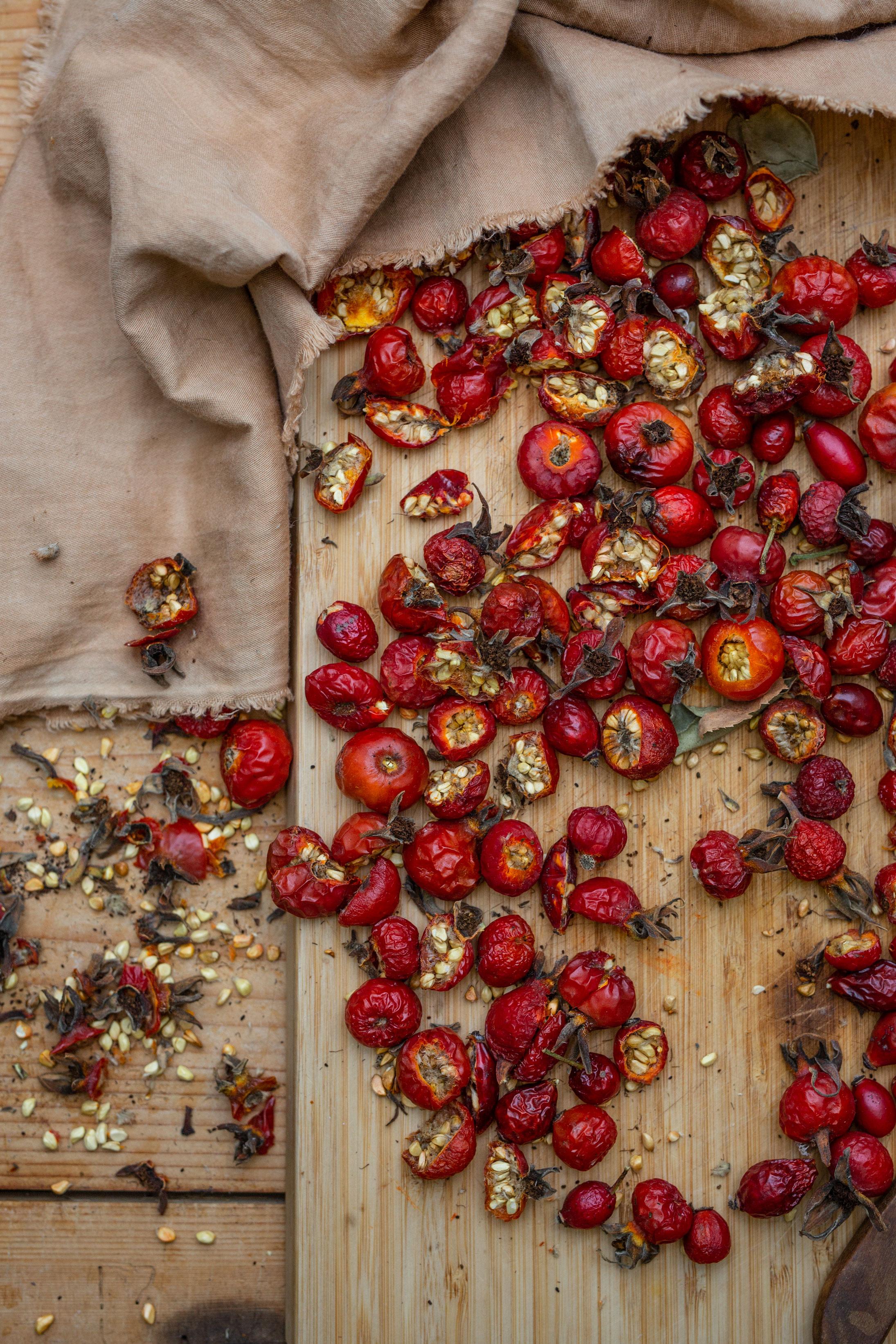 Hagebuttenpulver selber machen | Gesunde vegane Rezepte, Fermentation, Nachhaltigkeit - Syl Gervais