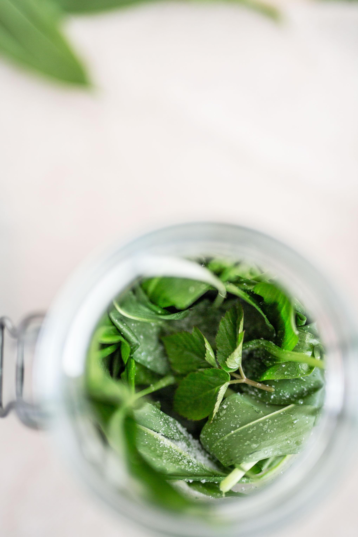 Bärlauch Rezept: Bärlauch fermentieren & haltbar machen | Syl Gervais - Gesunde vegane Rezepte