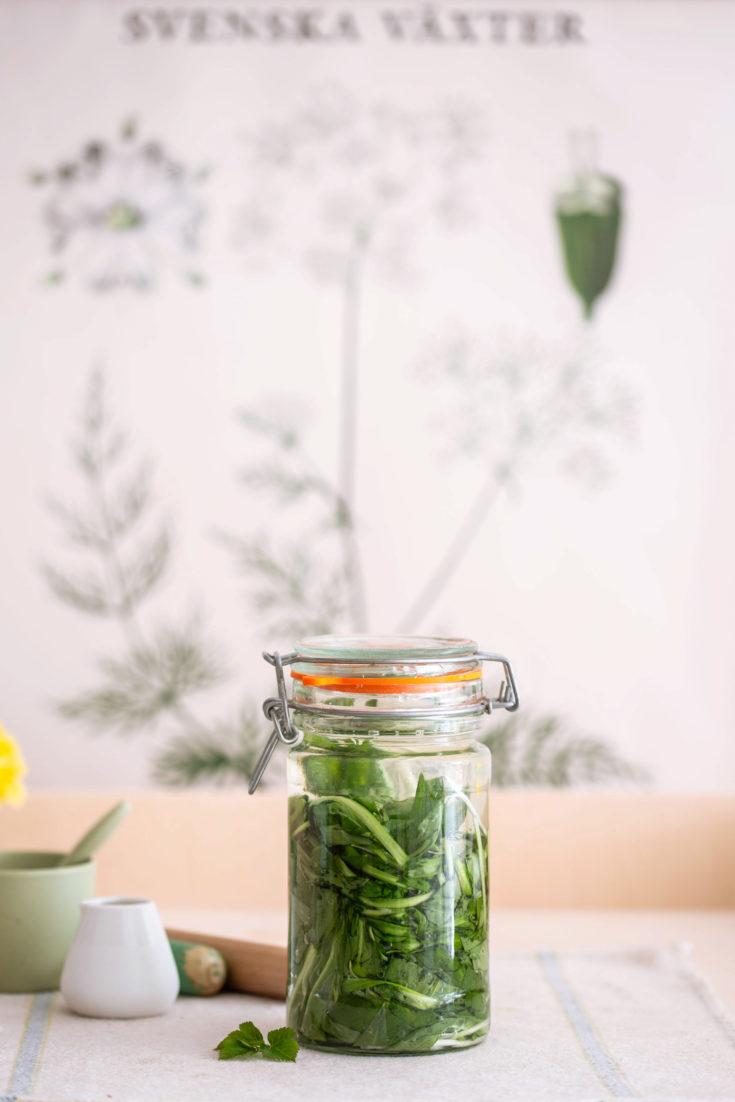 Rezept: Bärlauch fermentieren