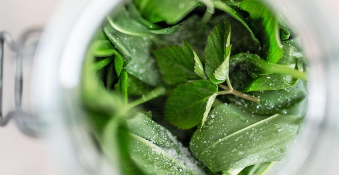 Bärlauch Rezept: Bärlauch fermentieren & haltbar machen | Gesunde vegane Rezepte, Fermentation, Nachhaltigkeit - Syl Gervais