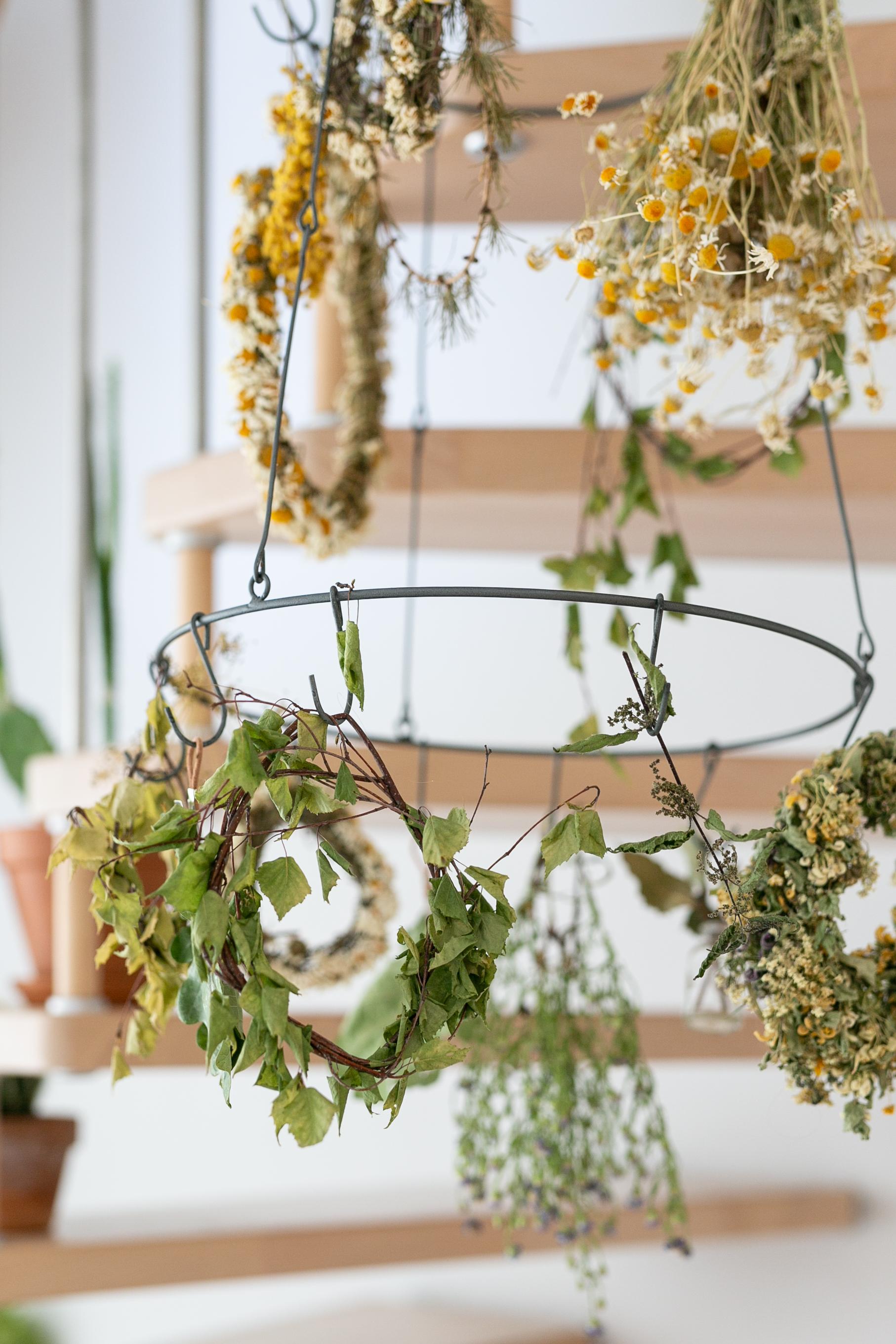 Eine kleine Küchen Inventur | Gesunde vegane Rezepte, Fermentation, Nachhaltigkeit - Syl Gervais