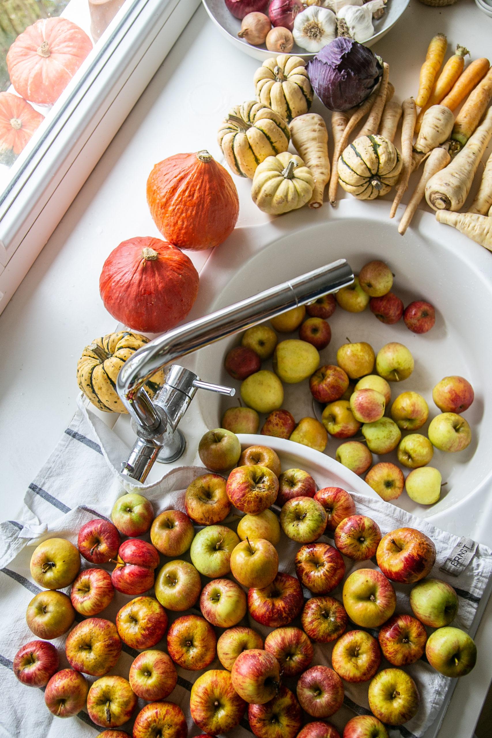 Buntes Obst und Gemuese im Waschbecken