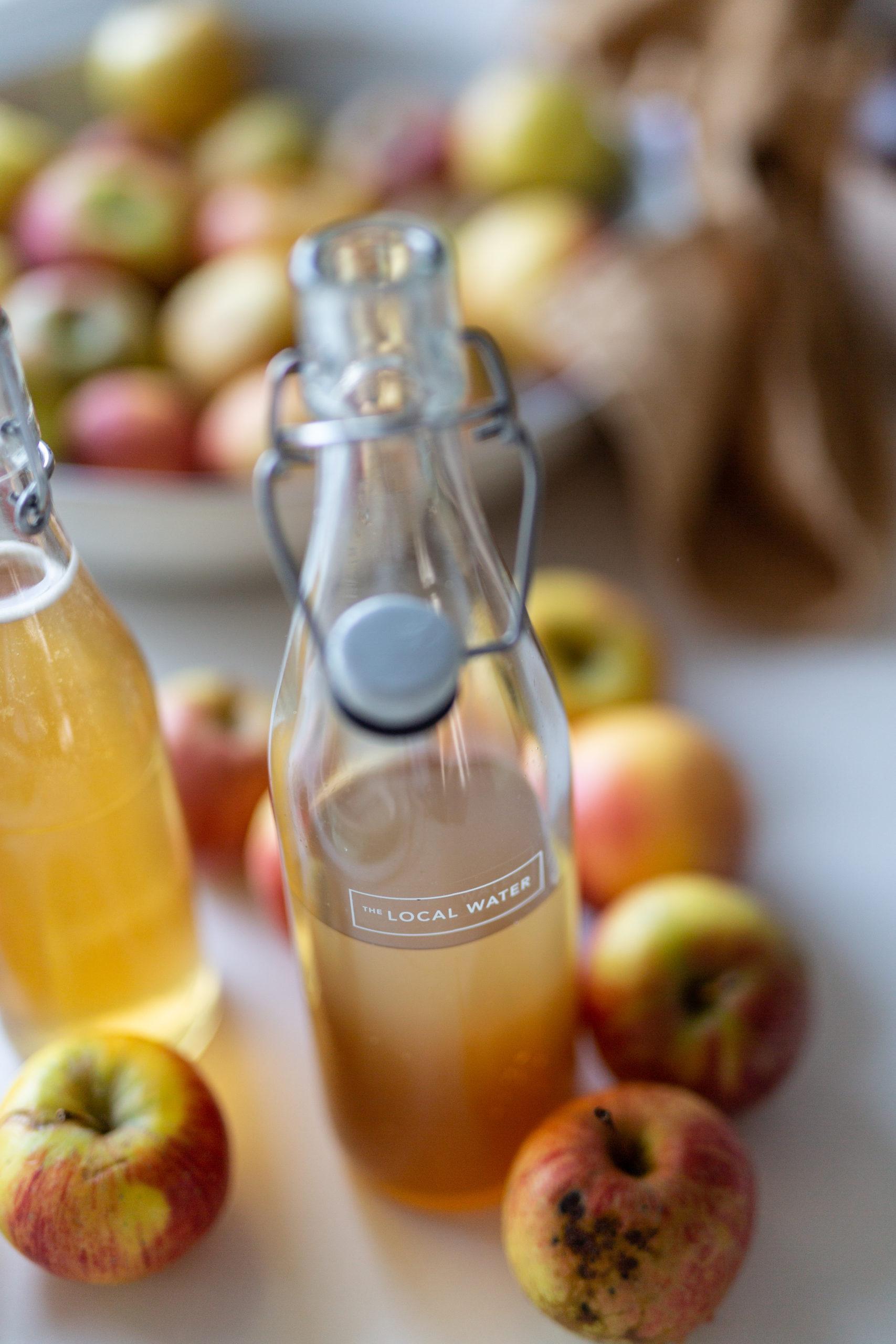 Leitungswasser mit dem The Local Water Filter | Gesunde vegane Rezepte, Fermentation, Nachhaltigkeit - Syl Gervais