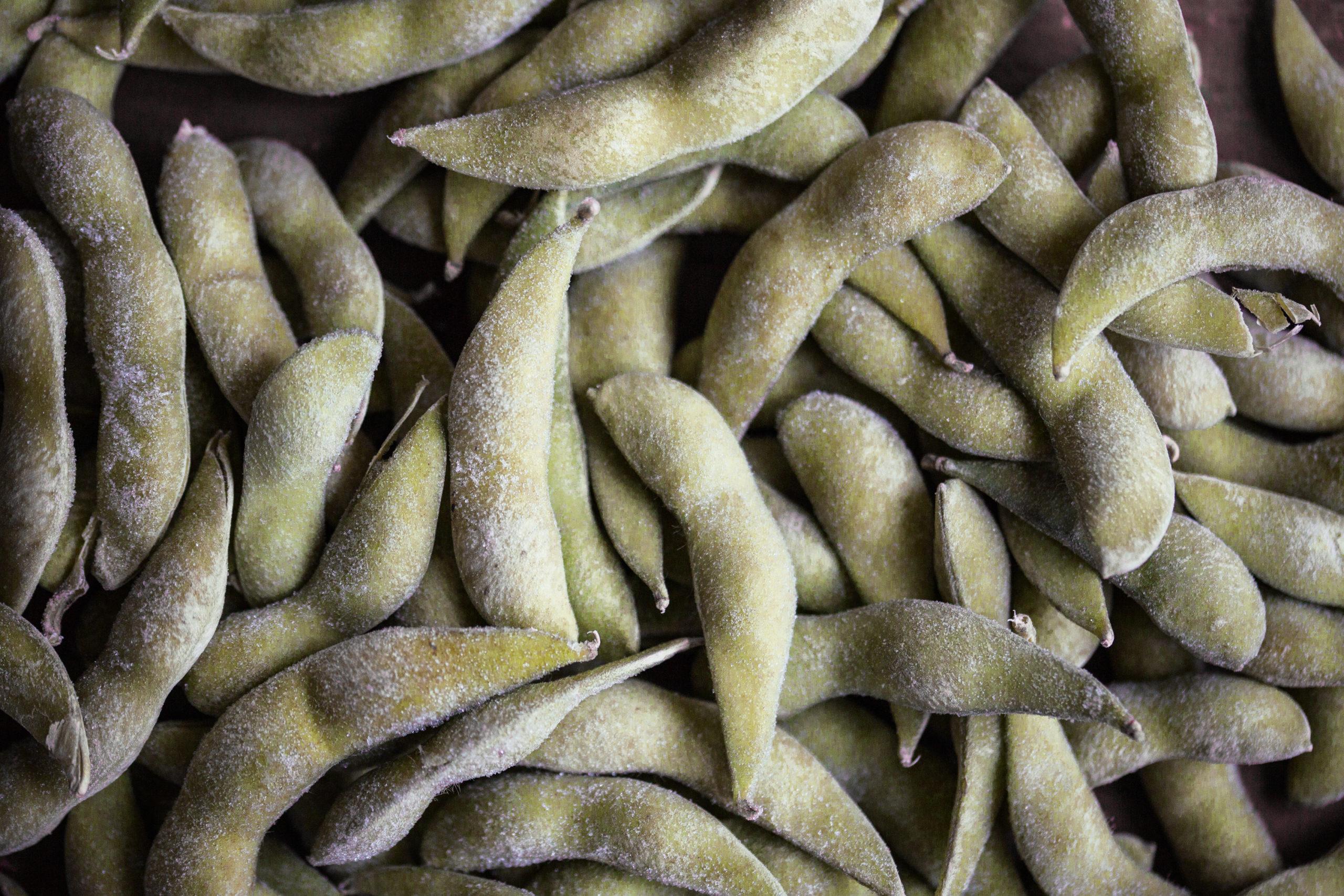 Edamame Dip - vegan - mit Spinat und Sesamsamen