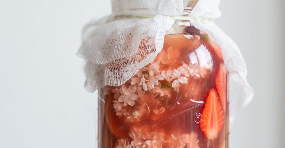 Erdbeer-Rhabarber-Shrub selber machen - Essigsirup aus Früchten | Gesunde vegane Rezepte & Fermentier-Workshops - Syl Gervais