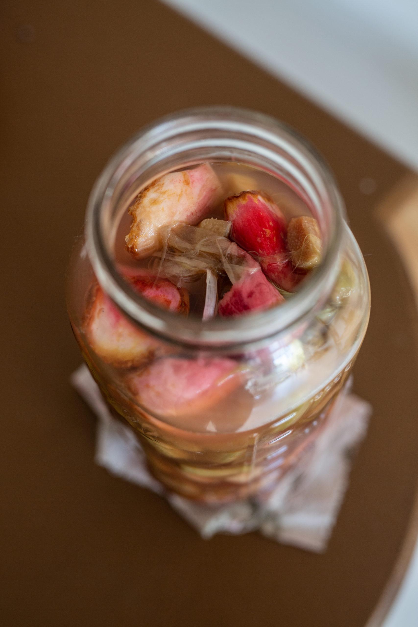 Shrub selber machen - Essig-saurer Fruchtsirup im Glas | Gesunde vegane Rezepte & Fermentier-Workshops - Syl Gervais