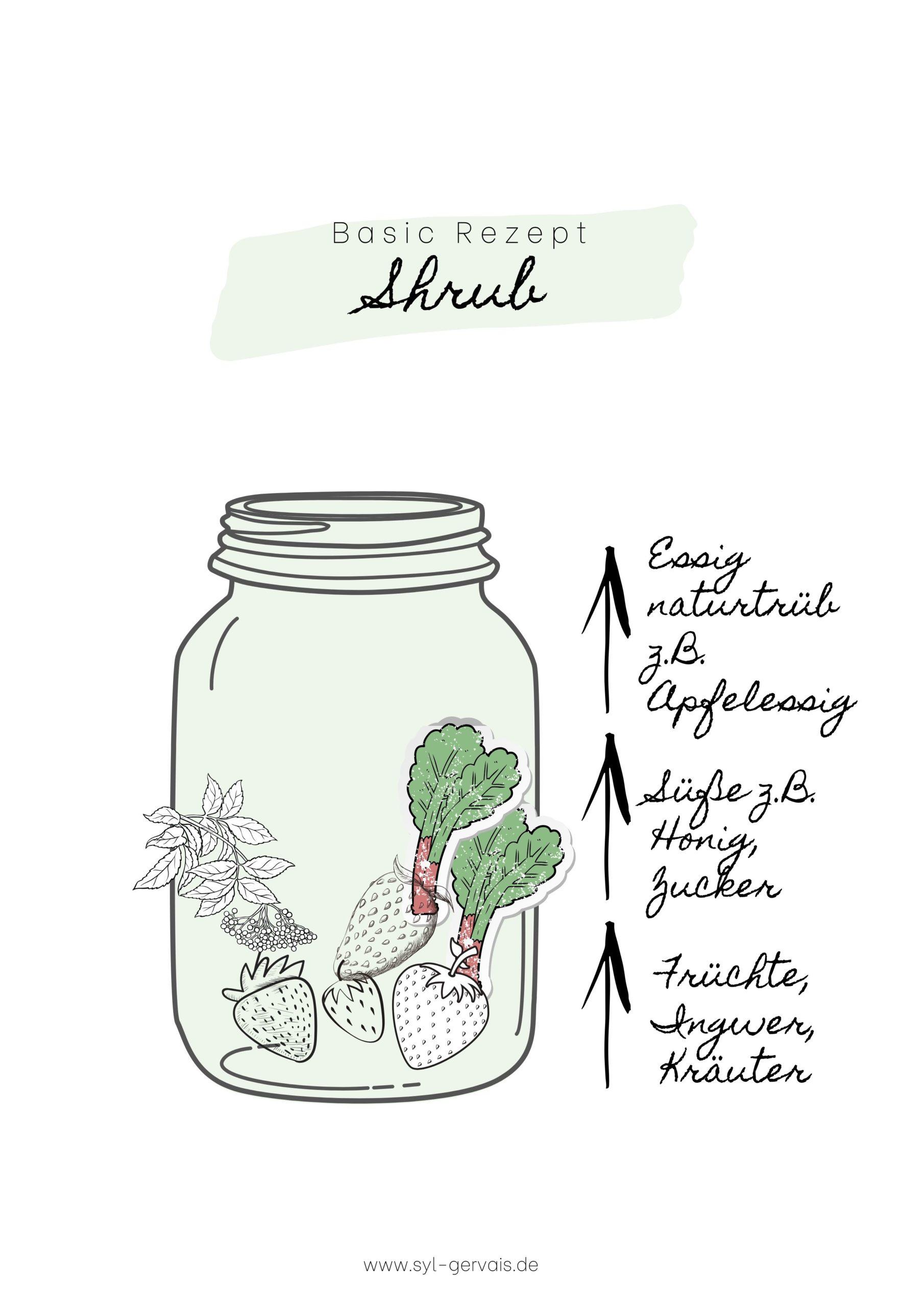 Shrub selber machen - Das brauchst du für den Essigsirup aus Früchten | Gesunde vegane Rezepte & Fermentier-Workshops - Syl Gervais