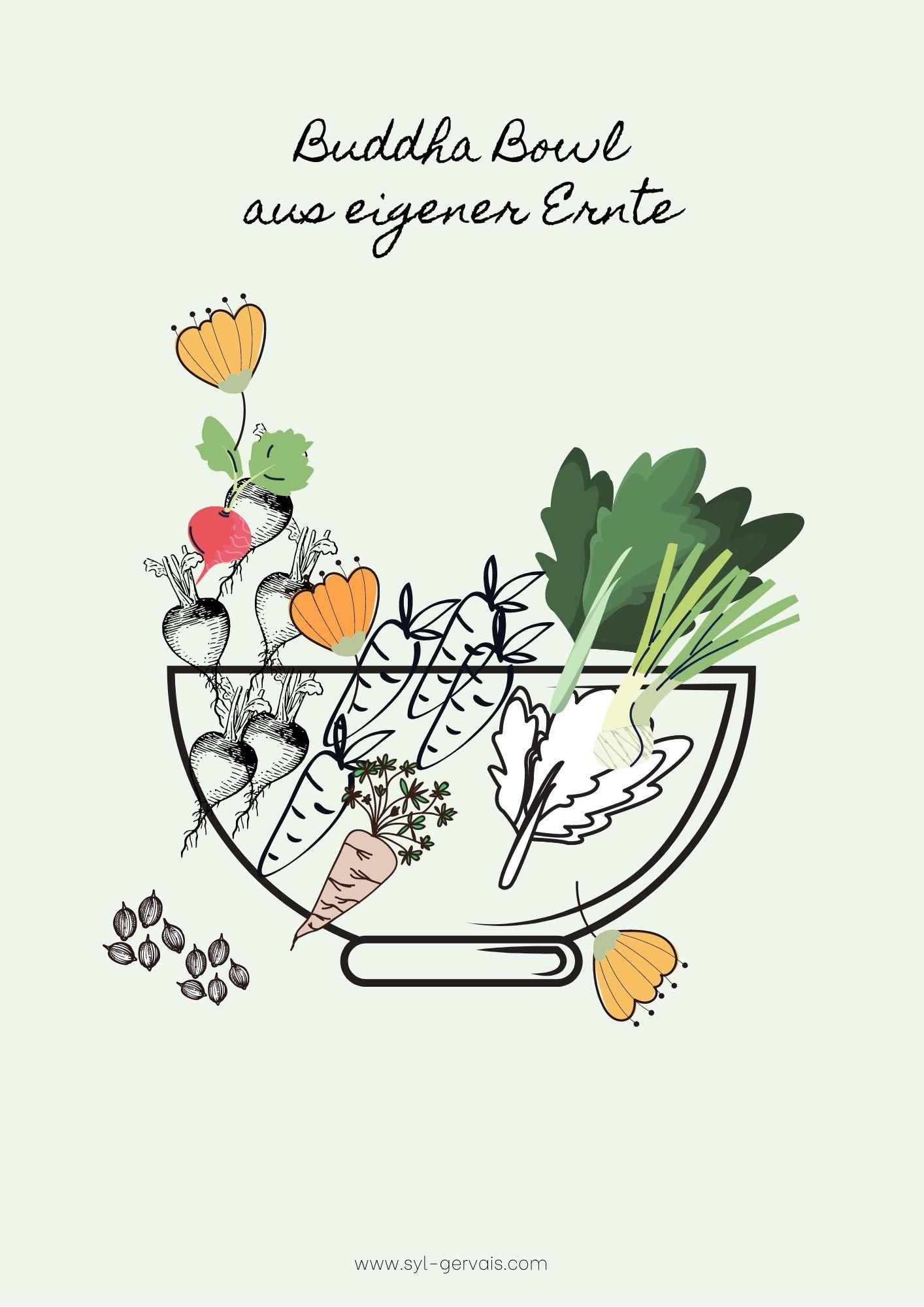 Hochbeet bepflanzen – eine Salat Bowl – die Ernte | Gesunde vegane Rezepte, Fermentation, Nachhaltigkeit - Syl Gervais