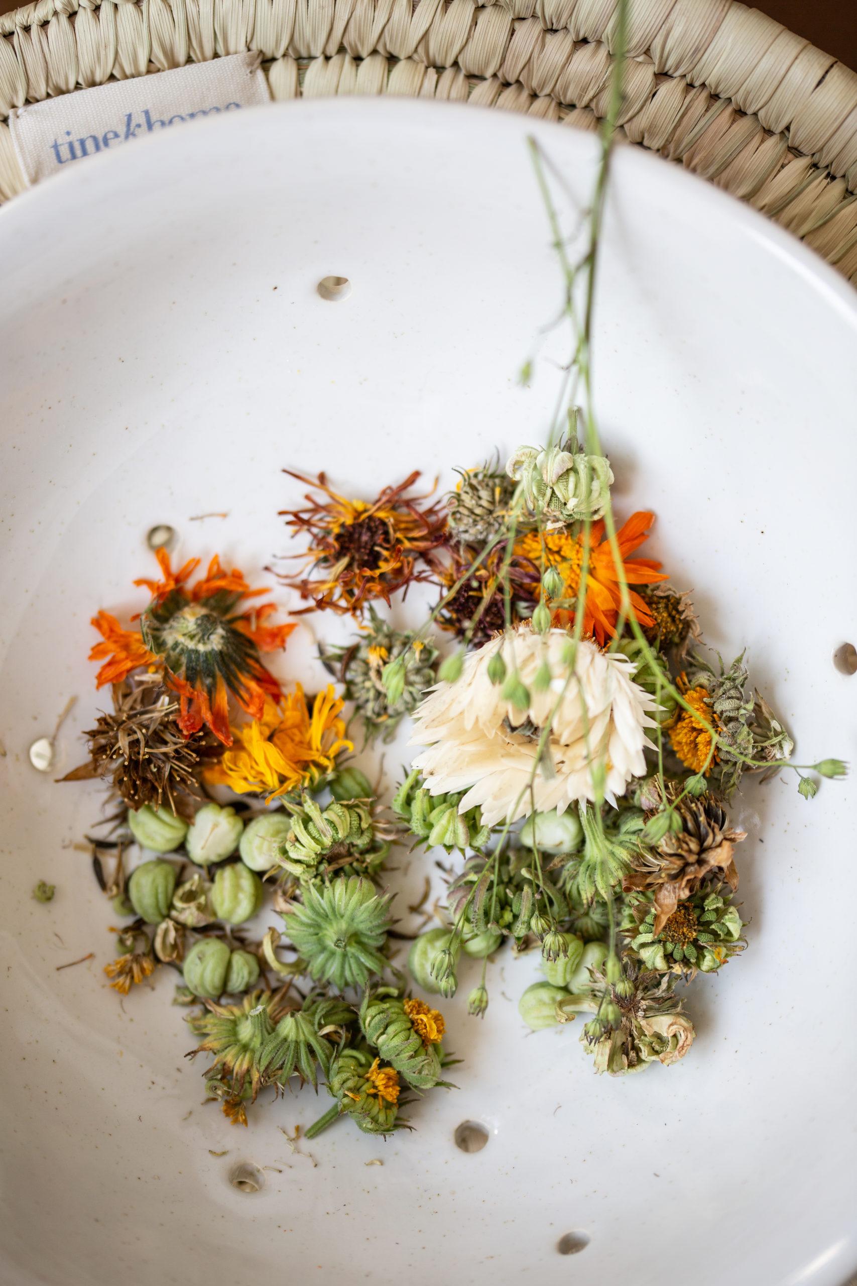 Kräuter Küche - Kapuzinerkresse Essig | Gesunde vegane Rezepte, Fermentation, Nachhaltigkeit - Syl Gervais